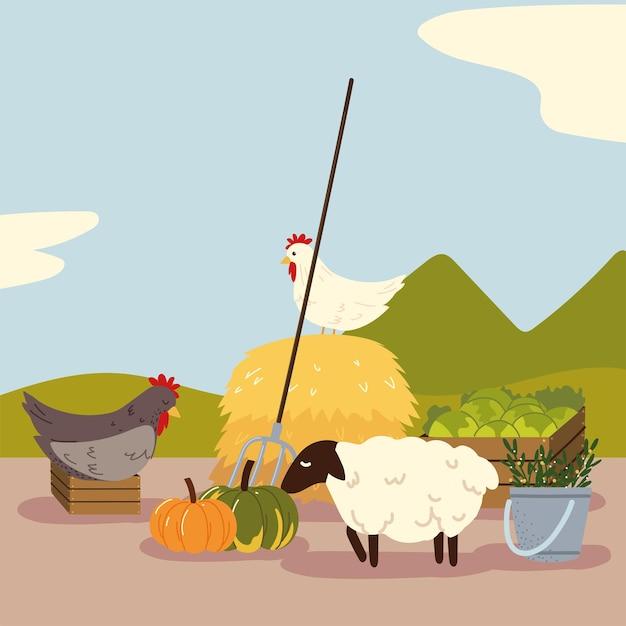 Lokaal biologisch voedsel en dieren