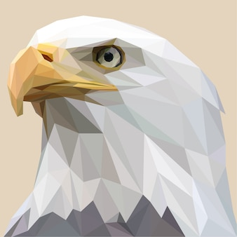 Lowpoly van white bald eagle