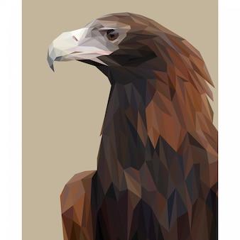 Lowpoly vector van eagle