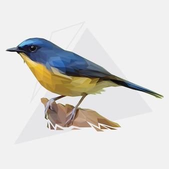 Lowpoly vector van tropical bird