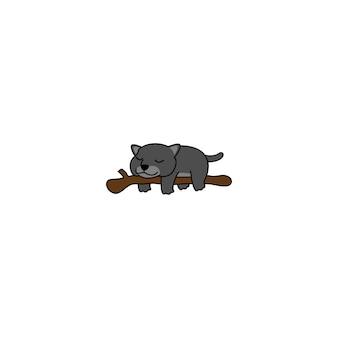 Luie zwarte panter die op een takbeeldverhaal slapen