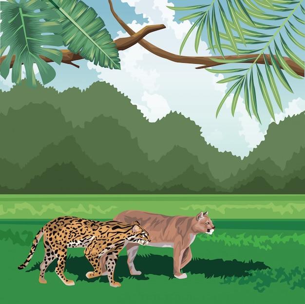 Luipaard katachtige tropische fauna en flora landschap