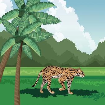 Luipaard wandelen gras palmen boom tropische fauna en flora landschap