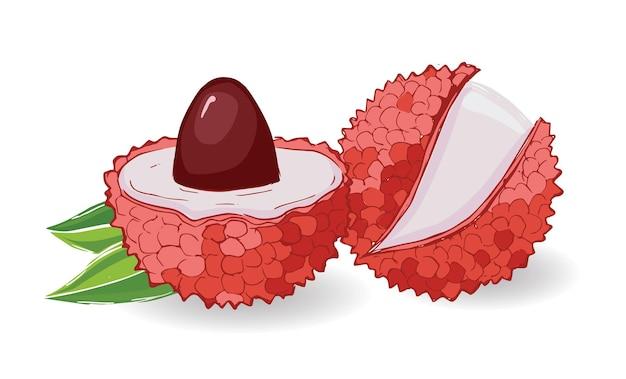 Lychee set exotisch fruit illustratie