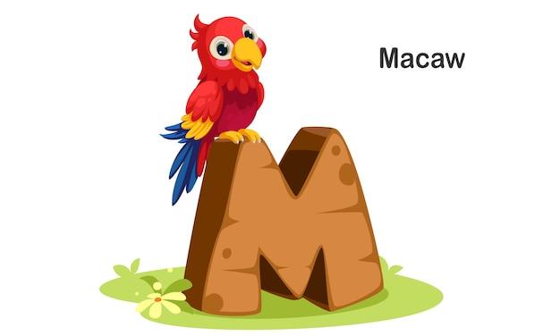 M voor macaw