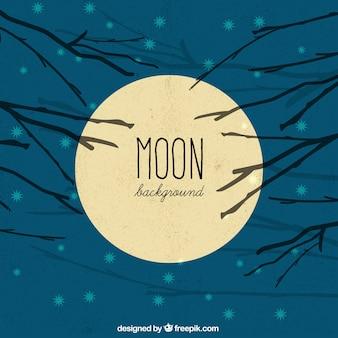 Maan achtergrond in de hemel met takken