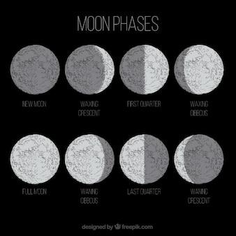 Maan in acht verschillende fasen