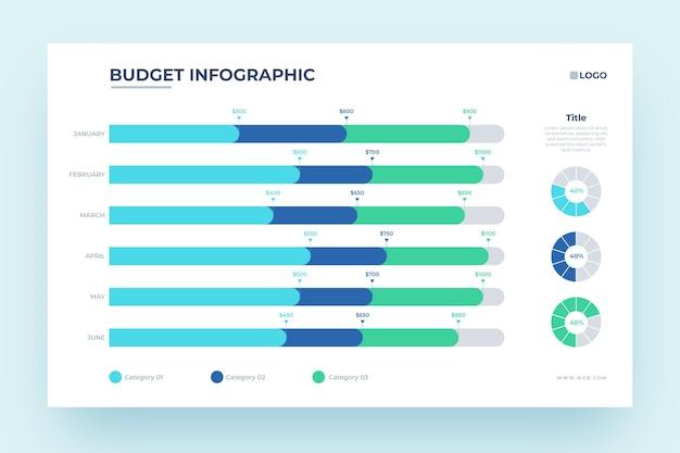 Maandelijks budget infographic ontwerp