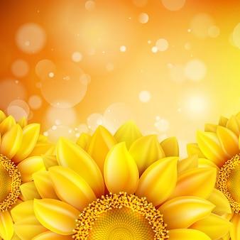 Macro zonnebloem achtergrond.