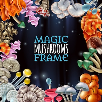 Magic mushrooms frame achtergrond