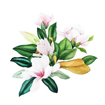 Magnolia en bladeren, helder aquarel boeket, hand getrokken