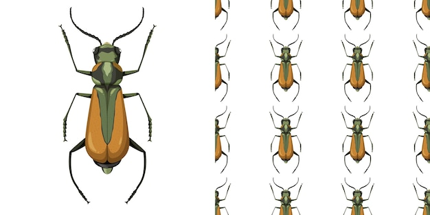Malachius aeneus insect en naadloos patroon