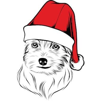 Maltese hond met kerstmuts voor kerstmis
