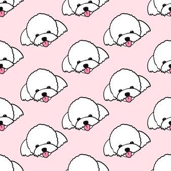 Maltese poedel hond naadloze patroon