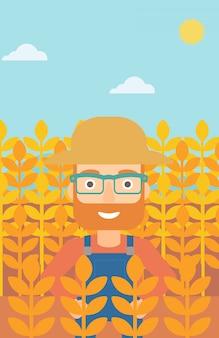Man in een tarweveld