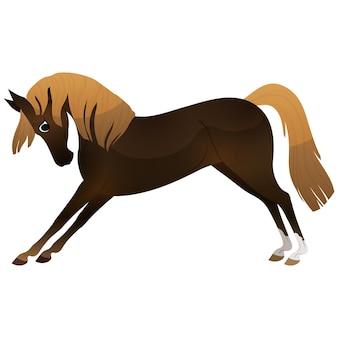 Man, vrouw, jongen, meisje rijden paarden vector illustratie set, geïsoleerd. familie paardensport opleiding paardrijden.
