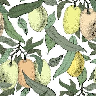 Mango tree vintage naadloze patroon. botanische mango fruit achtergrond. gegraveerde mango. retro illustratie