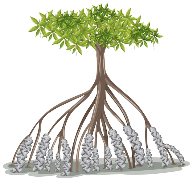 Mangroveboom in cartoon-stijl op witte achtergrond