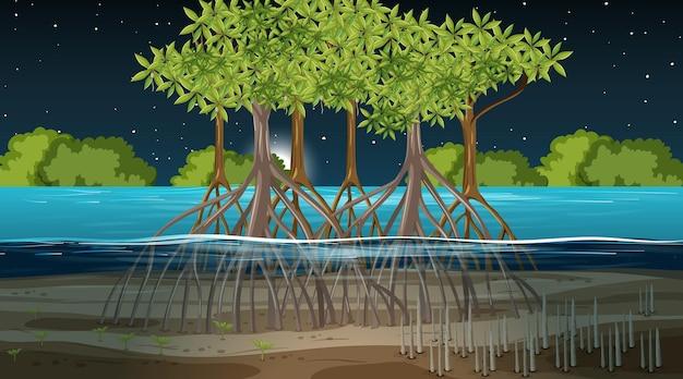 Mangroveboslandschapsscène bij nacht