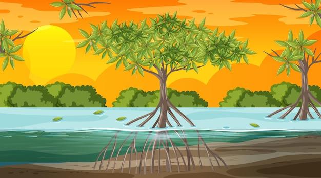 Mangroveboslandschapsscène bij zonsondergangtijd