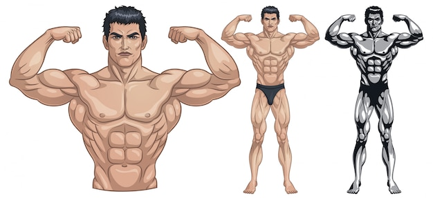 Mannelijk bodybuilder volledig lichaam