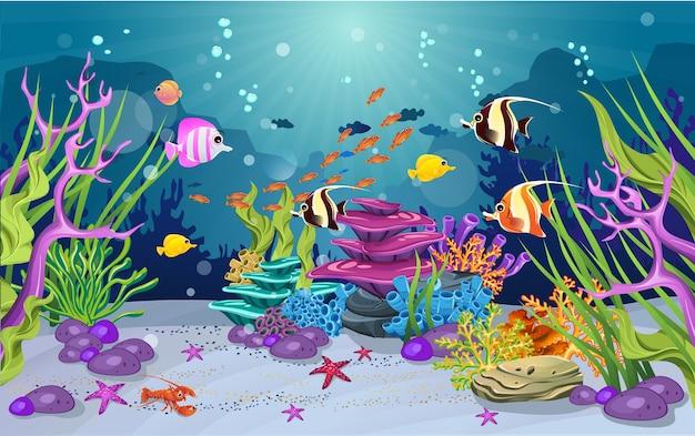 Mariene habitats en de schoonheid van koraalriffen