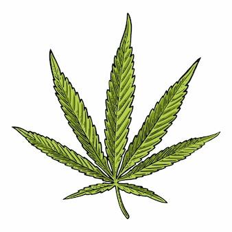 Marihuanablad. vintage zwarte gravure illustratie