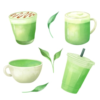 Matcha thee collectie illustratie