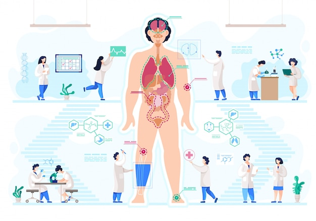 Medisch laboratorium, bio-kunstmatige organen, anatomie