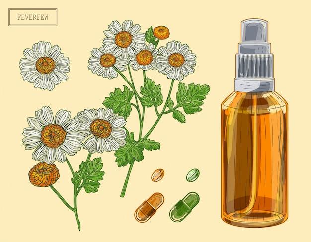 Medische moederkruid tak en bloemen en sproeier, met de hand getekende illustratie in een retro stijl