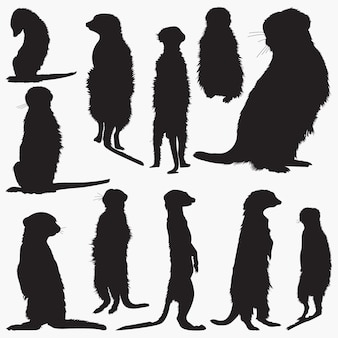 Meerkat silhouetten set