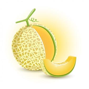 Meloenoranje vers fruit