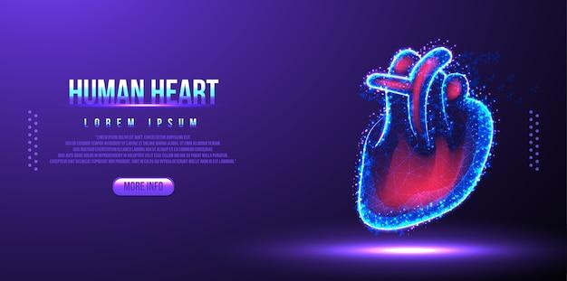 Menselijk hart laag poly draadframe