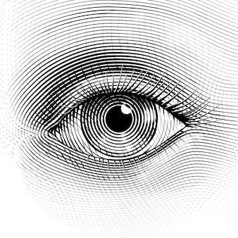 Menselijk oog in gegraveerde stijl