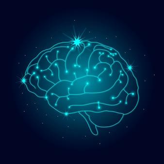 Menselijk zenuwstelsel