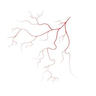 Menselijke ader vector symbool pictogram ontwerp illustratie