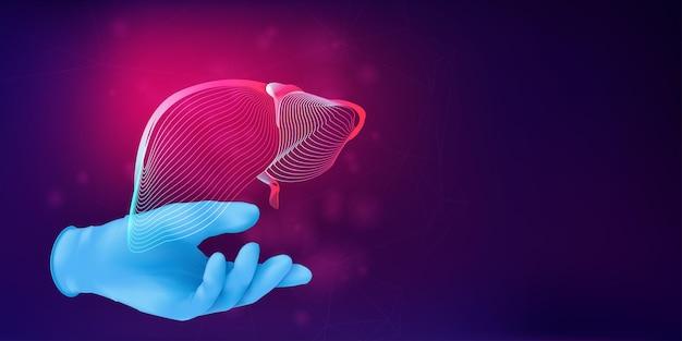 Menselijke lever 3d silhouet op de hand van een arts in realistische rubberen handschoen. anatomisch medisch concept met het draadframe van een menselijk orgaan op abstracte achtergrond. vectorillustratie in neon lineart-stijl