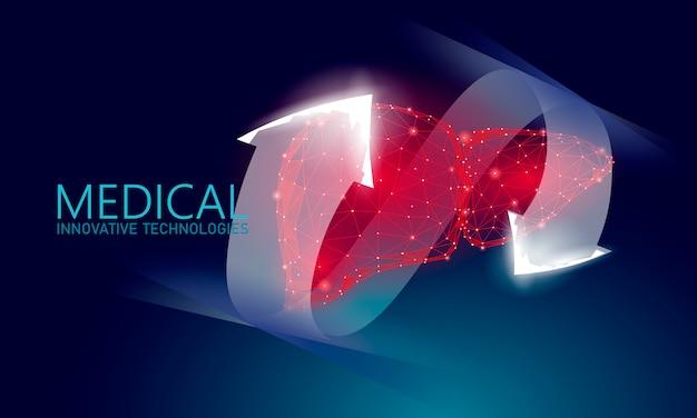 Menselijke lever reconstructie therapie medische concept.