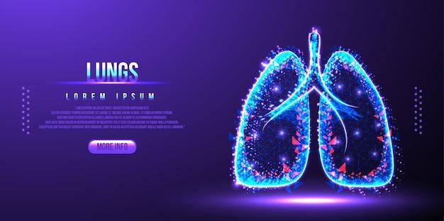 Menselijke longen laag poly draadframe