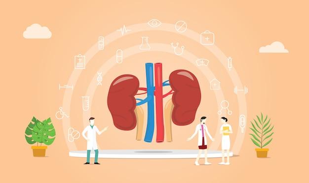 Menselijke niergezondheid met artsenteam