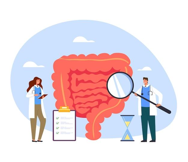 Mensen geneeskunde werknemers artsen verpleegkundige maken van geneeskunde diagnostisch onderzoek darmen.