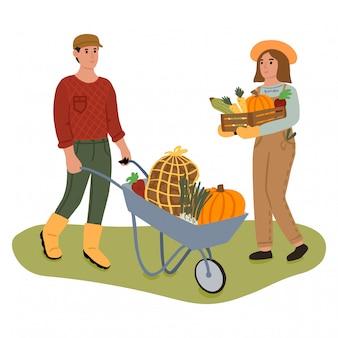 Mensen oogsten met verse groenten
