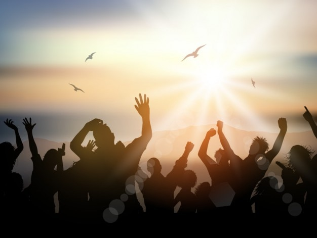 Mensen schare in een zomerfestival overzicht