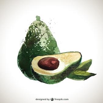 Met de hand beschilderd avocado