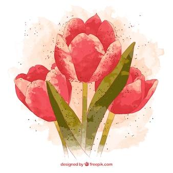 Met de hand geschilderd tulpen