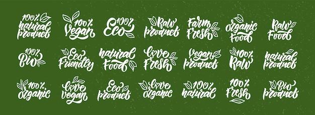 Met de hand getekende badges en labels met vegetarische veganistische rauwe eco bio natuurlijke verse gluten eps10