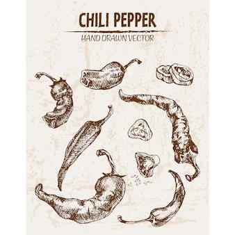 Met de hand getekende chili peper collectie