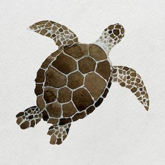 Met waterverf geschilderde zeeschildpad op wit canvas