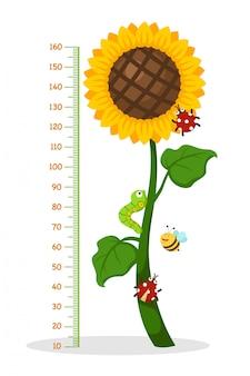 Metermuur met zonnebloem