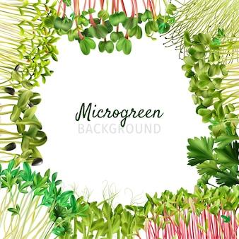 Microgreens achtergrond frame